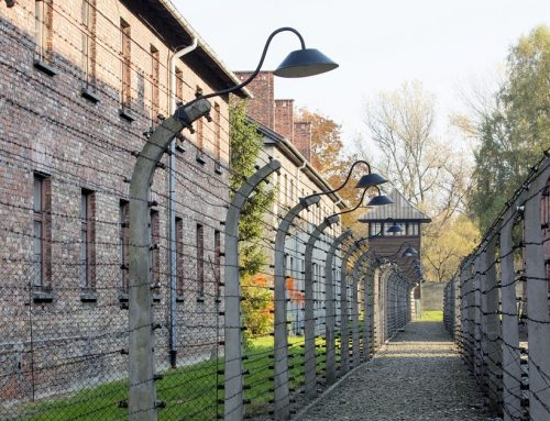 Shocking Discovery: Holocaust Survivors have Longer Life Expectancy. Why?
